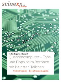 Quantencomputer: Tops und Flops beim Rechnen mit den kleinsten Teilchen
