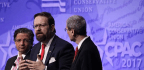 Sebastian Gorka Isn't Wrong About Everything