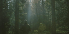 A Man Who Spent 27 Years Alone in the Woods on the Best of Hermit Literature