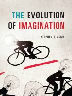 The Evolution of Imagination