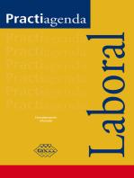 Practiagenda Laboral 2017