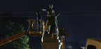 The Dismantling of New Orleans's Confederate Monuments