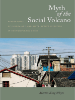 Myth of the Social Volcano