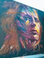 Bibliotheca graffitina