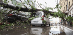 16 Killed and Hundreds Injured in Moscow Storm