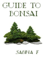 Guide To Bonsai