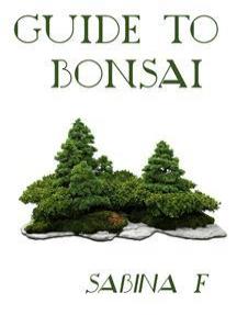 Guide To Bonsai