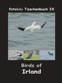 Birds of Irland: fotolulu Taschenbuch IX