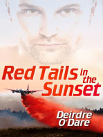 Red Tails in the Sunset