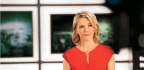 Megyn Kelly, Queen of TV Sparring, Meets Her Match