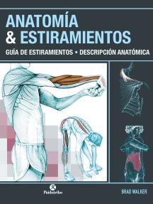 Anatomía & estiramientos: Guía de estiramientos. Descripción anatómica  (Color)