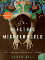 The Electric Michelangelo
