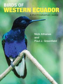 Birds of Western Ecuador: A Photographic Guide