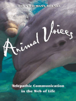 Animal Voices