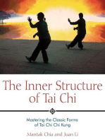 The Inner Structure of Tai Chi