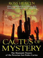 Cactus of Mystery