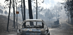 Portugal Declares 3 Days Of Mourning As Vast Wildfire Kills Dozens Of People
