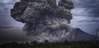 Dinosaurs Got an Evolutionary Assist From Huge Volcanic Eruptions
