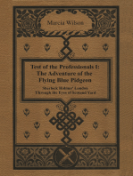 The Adventure of the Flying Blue Pidgeon