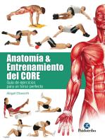 Anatomía y entrenamiento del core
