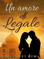 Un amore di legale