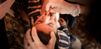 Mutant Strains Of Polio Vaccine Now Cause More Paralysis Than Wild Polio