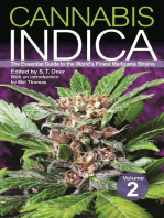 Cannabis Indica Volume 2