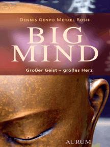 Big Mind: Großer Geist – großes Herz