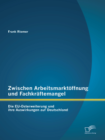 Zwischen Arbeitsmarktöffnung und Fachkräftemangel: Die EU-Osterweiterung und ihre Auswirkungen auf Deutschland