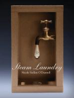 Steam Laundry
