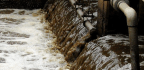 Scientists Are Scrutinizing City Sewage to Study Our Health