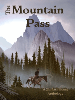 The Mountain Pass