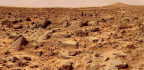 The Surface of Mars Is Probably Too Toxic for Bacteria to Survive