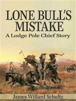 Lone Bull's Mistake