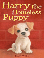 Harry the Homeless Puppy
