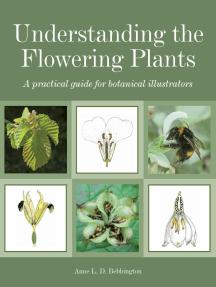 Understanding the Flowering Plants: A Practical Guide for Botanical Illustrators