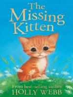 The Missing Kitten