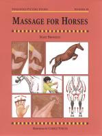 MASSAGE FOR HORSES