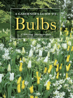 Gardener's Guide to Bulbs