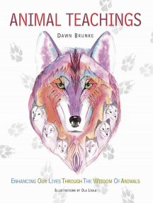 Animal Teachings: Enhancing our lives through the wisdom of animals