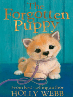 The Forgotten Puppy