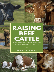 Raising Beef Cattle: A Beginner's Starters Guide to Raising Beef Cattle