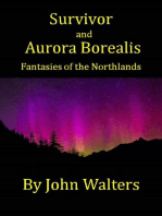 Survivor and Aurora Borealis