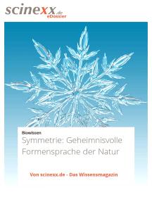 Symmetrie: Geheimnisvolle Formensprache der Natur