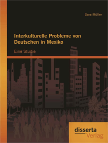 Interkulturelle Probleme von Deutschen in Mexiko: Eine Studie