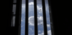 The Reckoning Over Young Prisoners Serving Life Without Parole