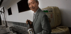 As Japan Falls out of Love With Sake, the World Orders Another Glass