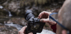 How to Choose the Best Digital Camera for You