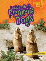 Let's Look at Prairie Dogs