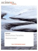 Bedrohtes Paradies Wattenmeer